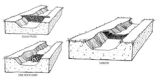 aridland water harvesting study